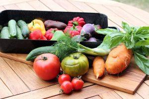 Análisis de las 9 dietas más famosas